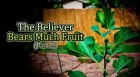 The Believer Bears Much Fruit (Part 2)
