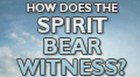 How Does the Spirit Bear Witness that we are Children of God?